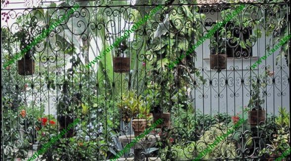 Hàng rào sân vườn đẹp như mơ